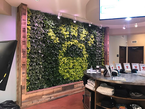 Living wall with Lightshade dispensary logo in plants