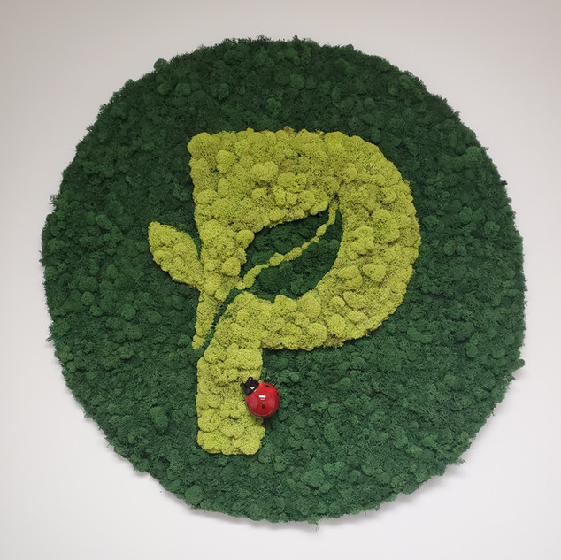 Plant Escape logo in Moss.jpg