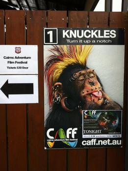 2012 Promo Apes