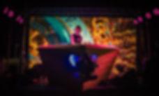 DJ Miss Fit at TS2019