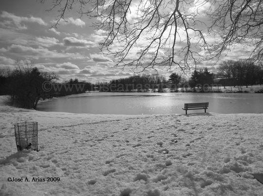 Lake in NJ.jpg