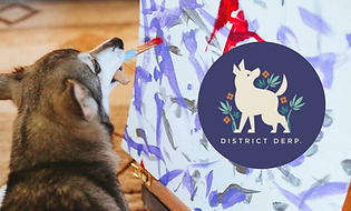 district-derp-display-listing.png