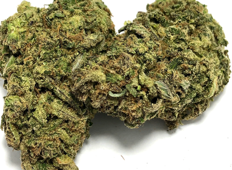*****Tropical Sleigh Ride - Baked DC*****