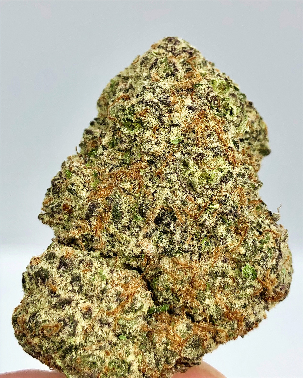 Toker's Guide Review - Black Cherry Pie (Photo)