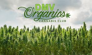 DMV Organic Cannabis Club Logo