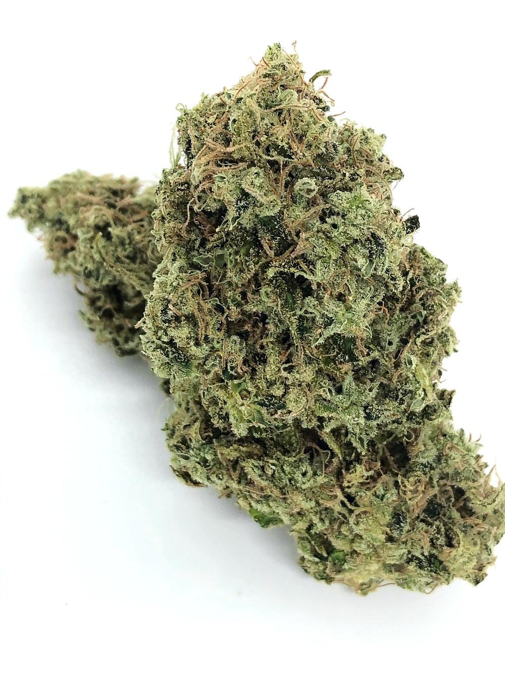 lemon-skunk-herbal-alternatives-dc-review-3