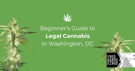 Beginner's Guide to Legal Cannabis in Washington, DC