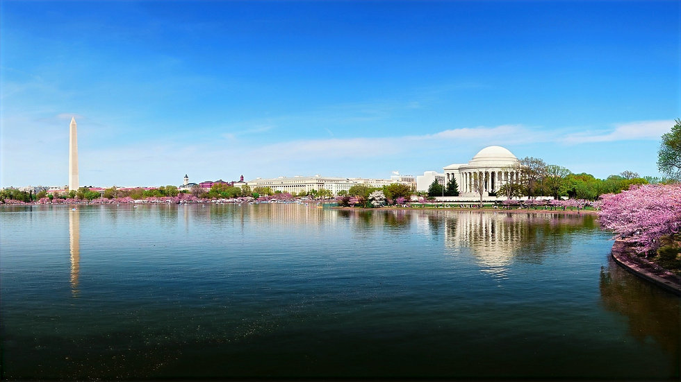 Toker's Guide - How to Get Weed in DC The Definitive Guide Background