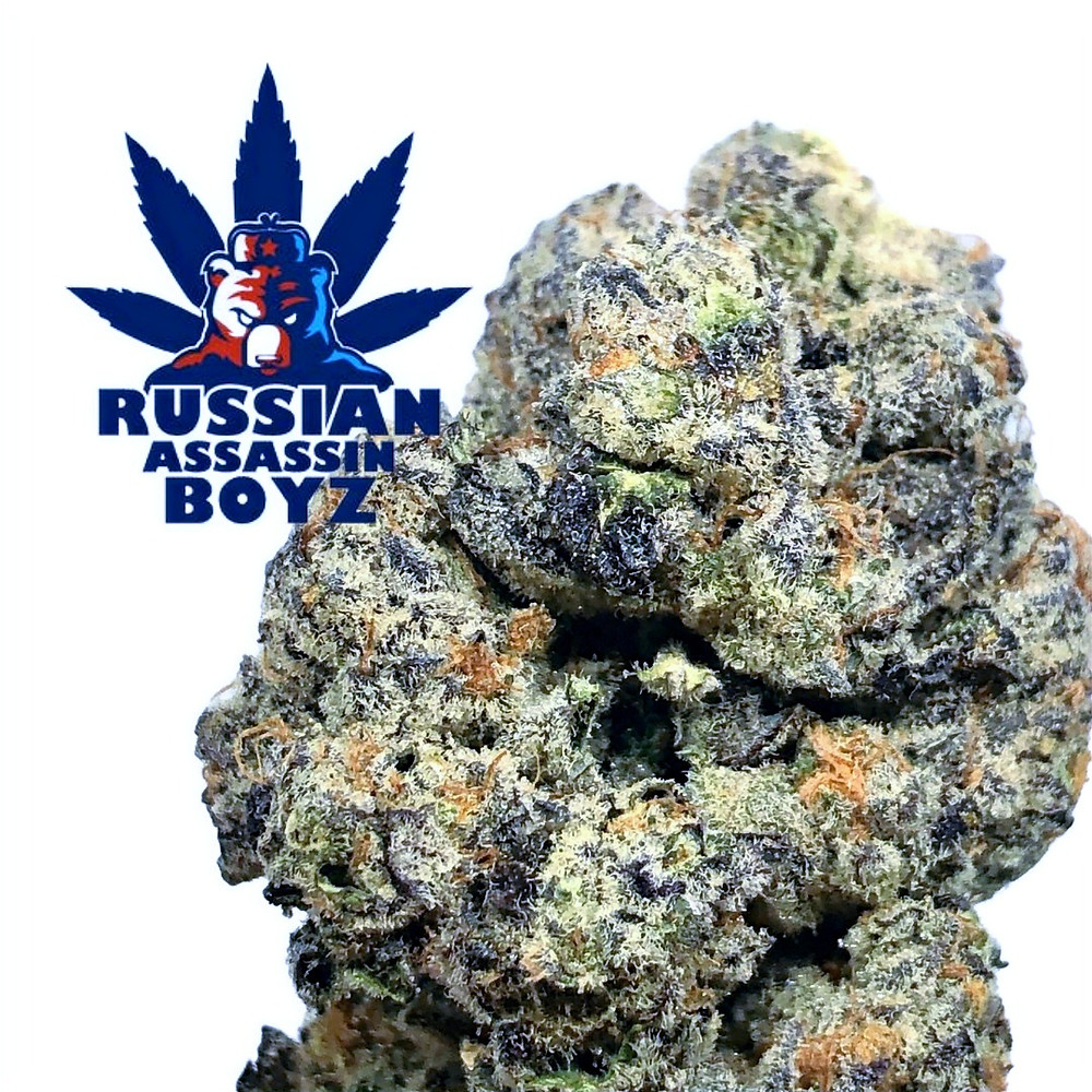 tokers-guide-review-russian-assassin-boyz-secret-cookies-cover