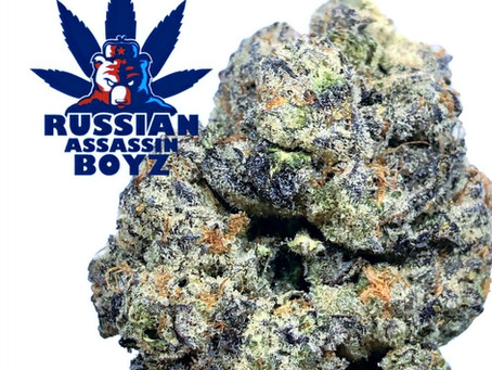 """Russian Assassin's """"Secret Cookies"""" - Joint Delivery"""