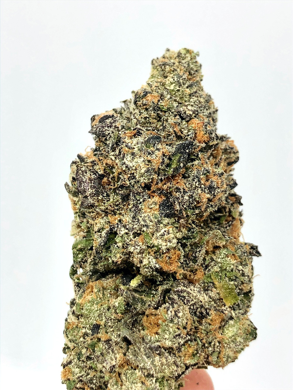 gruntz-review-top-secret-dc-weed-delivery