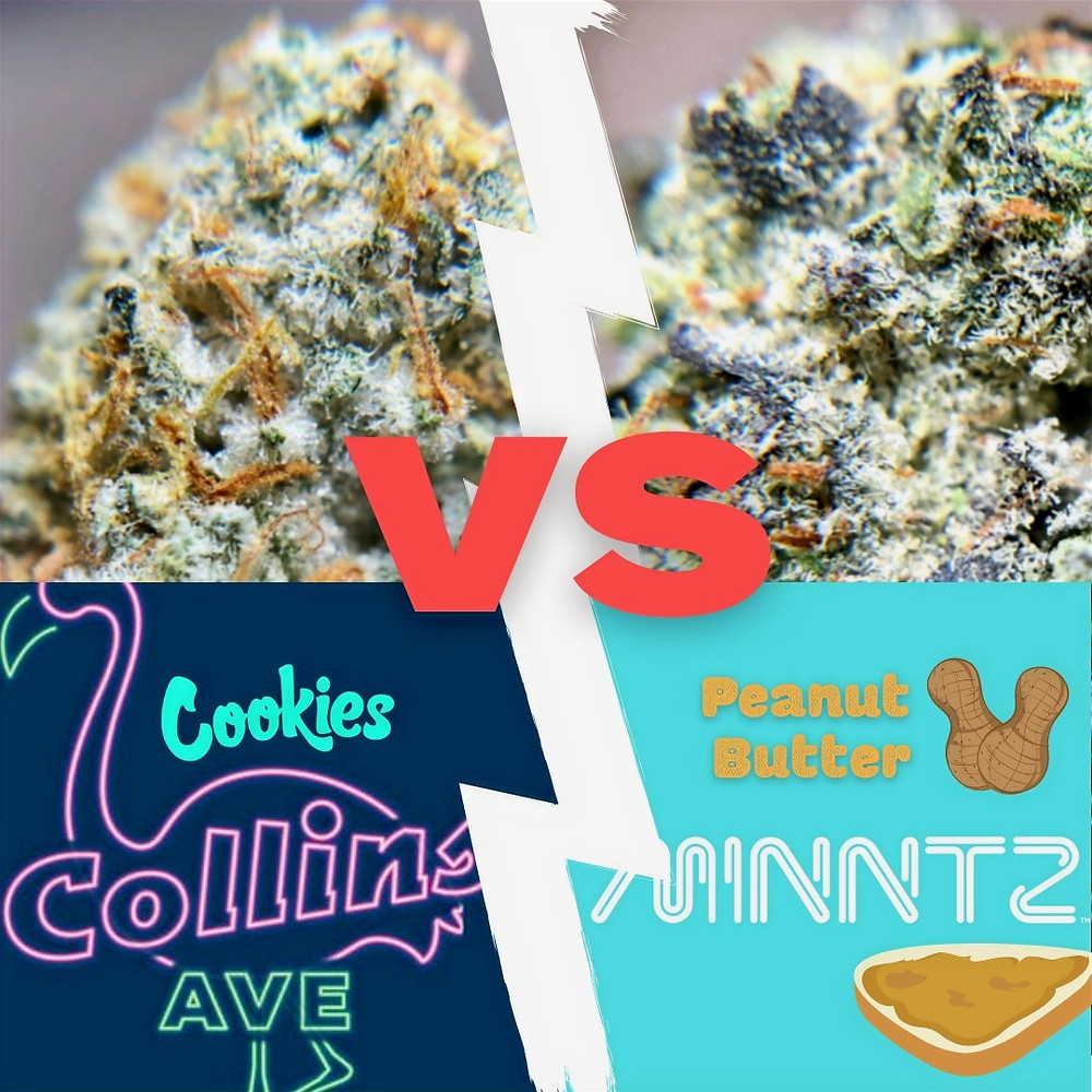 Designer Strain Deathmatch Cookies Collins Ave versus Peanut Butter Minntz