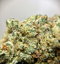 Denver Cookies Hybrid - Exotic Blooms DC weed delivery service