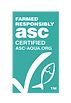 ASC-banner webb.png