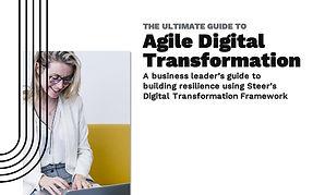 Agile-Digital-Transformation_edited.jpg