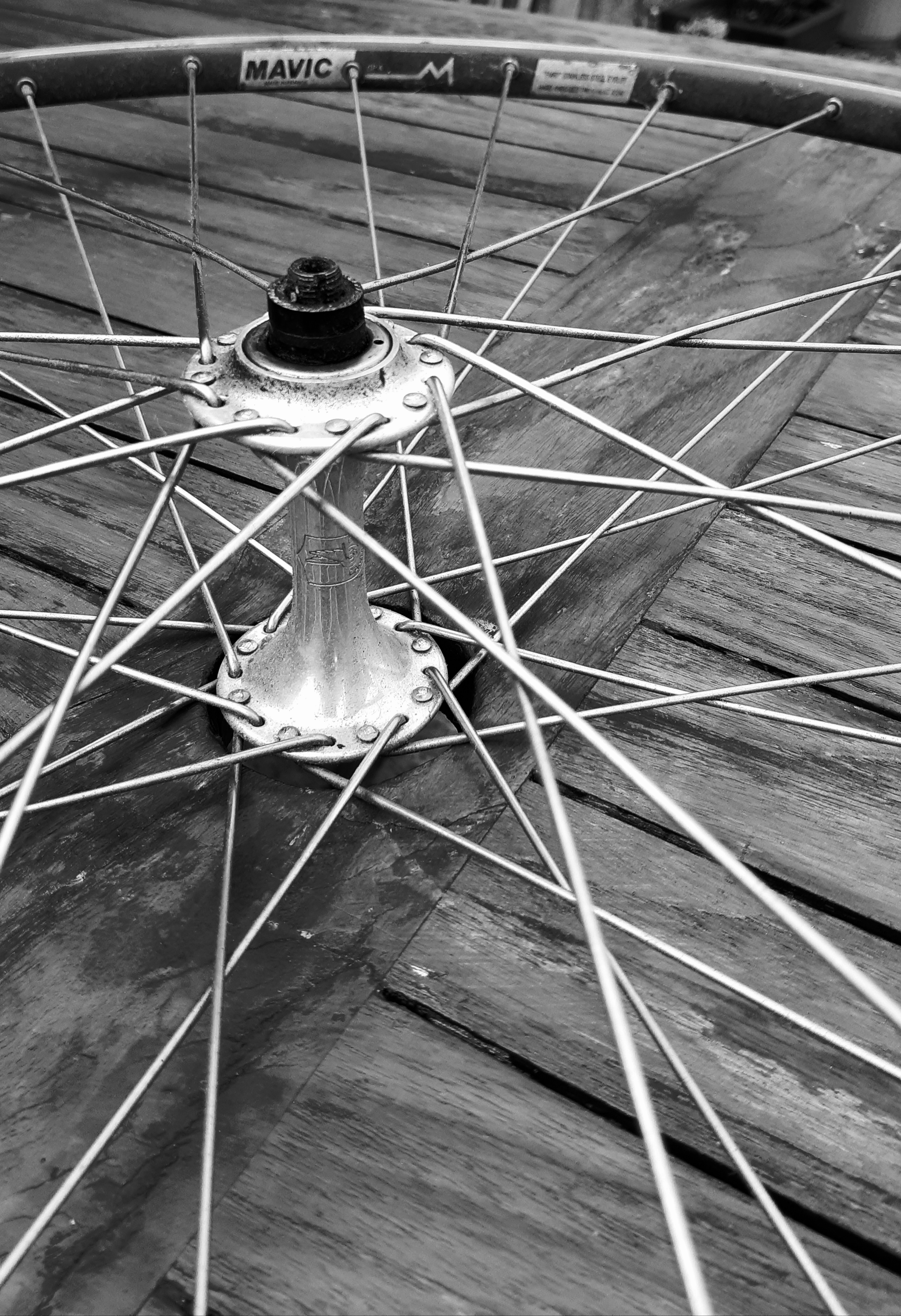 Spokes of a Bicycle tyre