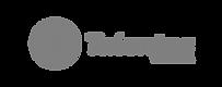 Logo_Talentos_cabeca.png