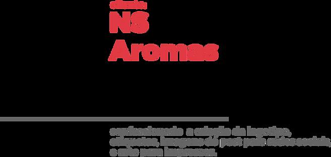 Imagem NS 01.png