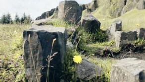Kirkjubæjarklaustur - eine kleine Rundwanderung