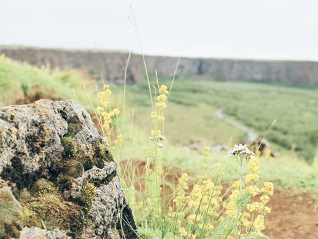Hinauf zur Felseninsel Eyjan