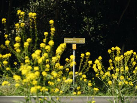 Vulkanstraße_teil1_ 2.jpg