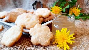Da geht die Sonne auf: Löwenzahn-Cookies und Löwenzahnhonig (Löwenzahn-Gelee)🌞