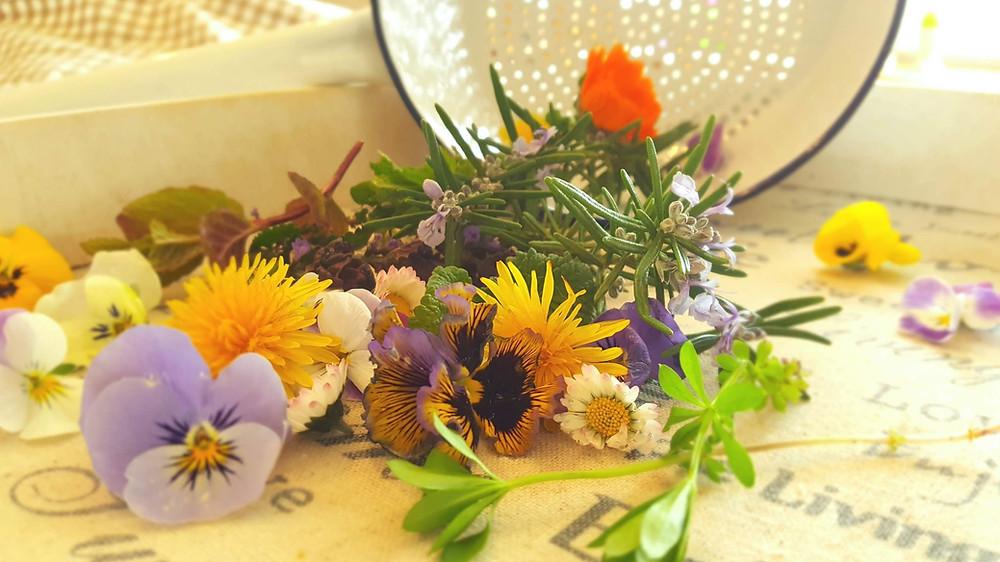 Blumen, Hornveilchen, Gänseblümchen, essbare Blüten, Löwenzahn, Sieb, Emaillie, Shabby, Nostalgie