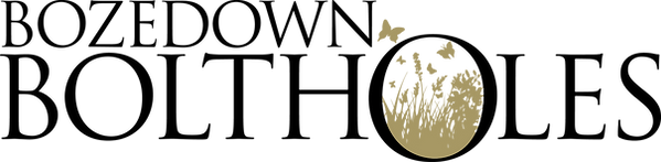 BB Final logo.png