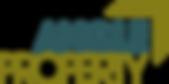 Angle Logo col.png