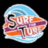 circle STT logo_edited.png