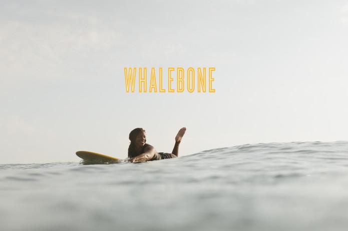 Ansea + Whalebone