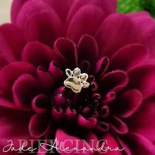 FB_IMG_1613678473919.jpg