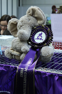 Helen wins Cuddly Toy Comp! (adult)