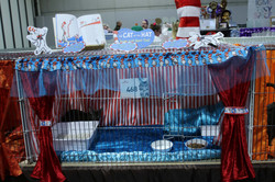 Teddy's Pen The Cat in the Hat