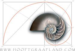 logo-bord-fl-w.jpg