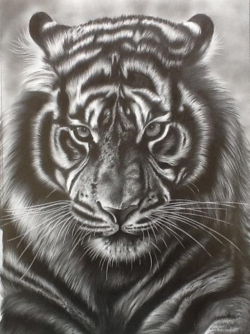 Tiger Face 2