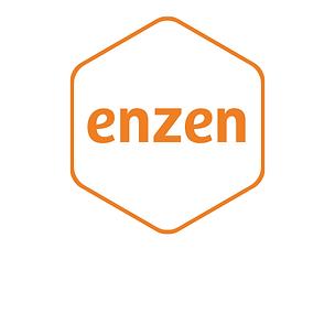 enzen-group.png