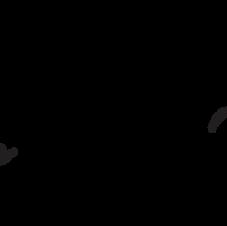 Shova Nikki Williams Logo