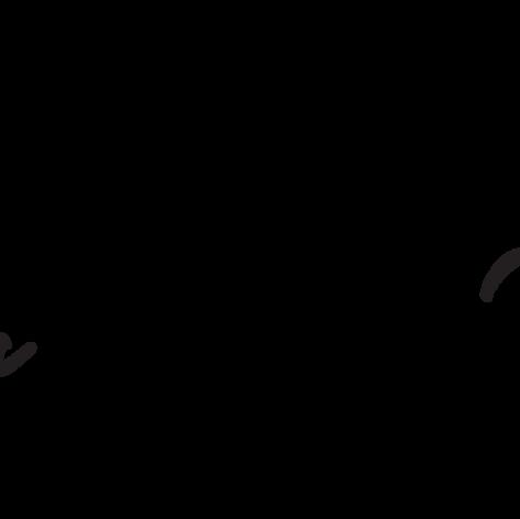 SNW LogoFINAL.png