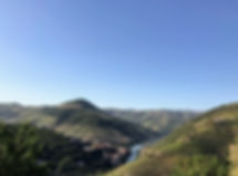 Hiking & Wine Tasting in Douro.jpg