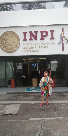 Mexican Indigenous-2.jpg