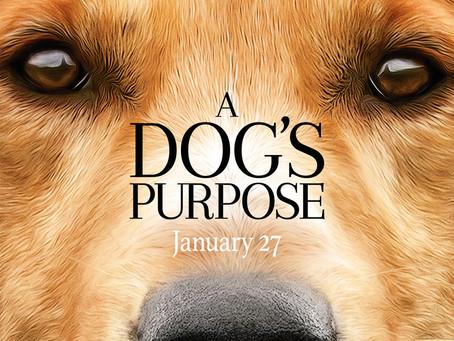 "Rob Reviews ""A Dog's Purpose"""