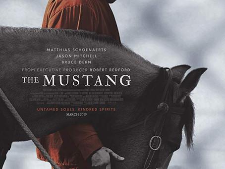 """Rob Reviews """"The Mustang"""""""