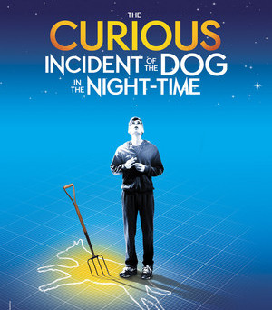 """Rob Reviews """"The Curious Case of the Dog in the Night-Time"""""""