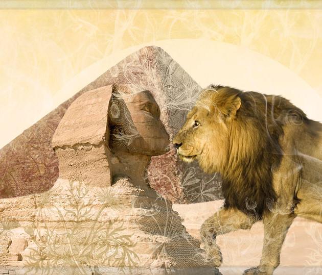 Sphinx Love