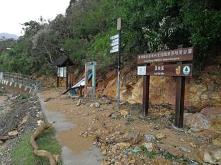 颱風山竹過境之後 荔枝窩遭破壞近況