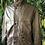 Thumbnail: Dark brown leather jacket