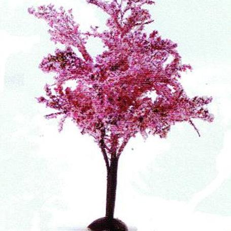 Tree-Blooming Weeping Apple