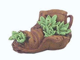 Plant in Shoe