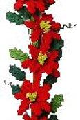 Poinsettia Vine